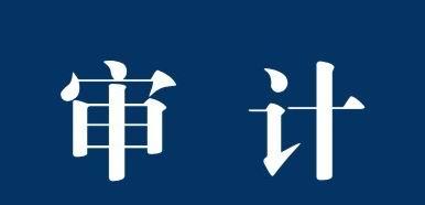茂名市盈恒信会计师事务―审计